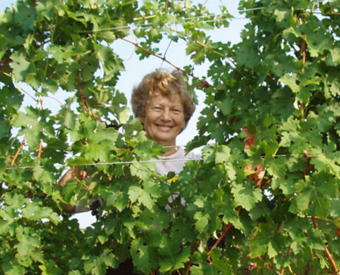 Judy Furrow in the vines