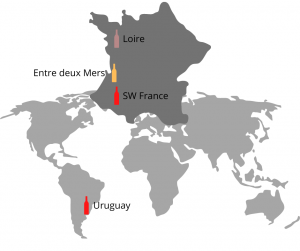 Pictured is the outline of a world map with an outline map of France added to it